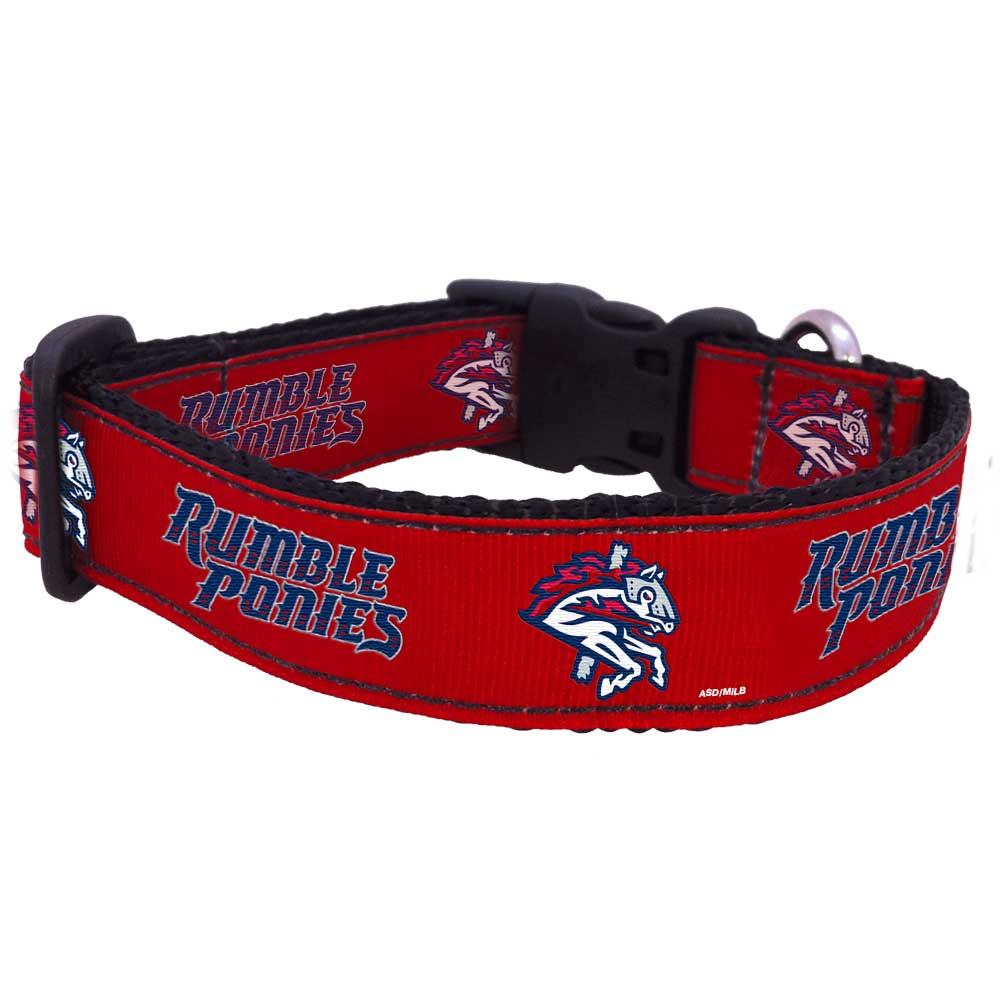 All Star Dogs: Binghamton Rumble Ponies Pet Products