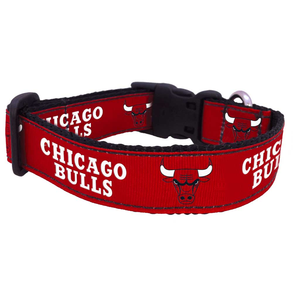 All Star Dogs: Chicago Bulls Pet apparel and accessories